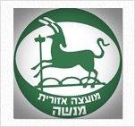 לוגו מועצה אזורית מנשה